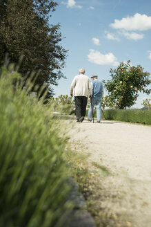 Two old friends walking in the park, back view - UUF000683