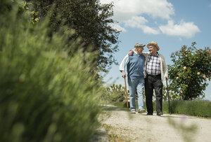 Two old friends walking in the park - UUF000690