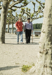 Germany, Rhineland-Palatinate, Worms, two old friends walking at promenade of Rhine River - UUF000731