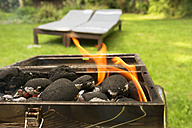 Burning coal briquets on grill in garden - ONF000588