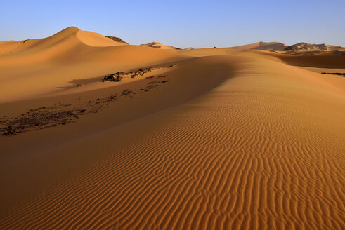 Africa, Algeria, Sahara, Tassili N'Ajjer National Park, Tadrart, Sand dunes at Oued In Djerane - ES001178