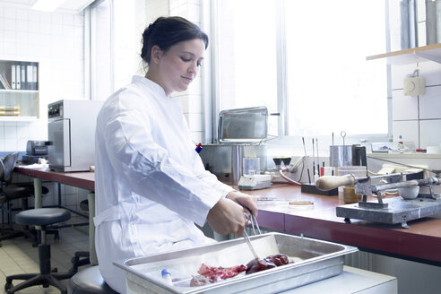 Female food analyst working in laboratory - SGF000748