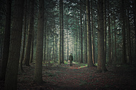 Person walking in dark forest, alienation - DWI000074