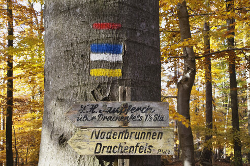 Germany, Rhineland-Palatinate, Palatinate Forest, Bad Duerkheim, Signs on a tree, Hiking path, Palatinate Forest-North Vosges Biosphere Reserve - GWF002881