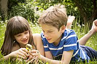 Portrait of brother and sister lying on meadow in the garden having fun with magnifying glass - LVF001373