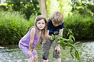 Brother and sister standing in front of brook watching plant with magnifying glass - SARF000683
