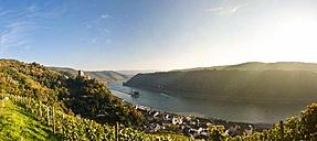 Germany, Rhineland-Palatinate, Kaub, Gutenfels Castle and Pfalzgrafenstein Castle at Rhine river - AMF002323
