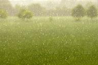 Germany, North Rhine-Westphalia, Minden, Weserauen, Rainy weather - HOHF000832