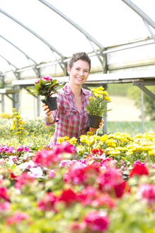 Portrait of female gardener offering potted plants in greenhouse - MAEF008449