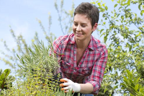 Portrait of female gardener working in garden centre - MAEF008423