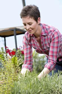 Portrait of female gardener working in garden centre - MAEF008425
