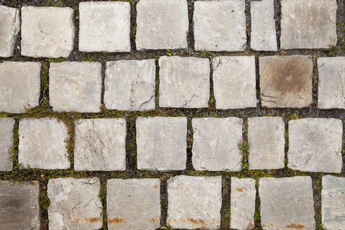 Germany, Cobblestones with moss between the gaps - WIF000766