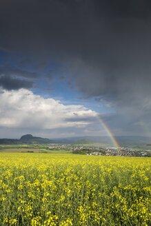 Germany, Baden-Wuerttemberg, Constance district, Hegau, Rainbow, Rape field - ELF001065