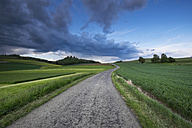 Germany, Baden-Wuerttemberg, Constance district, Hegau, Country road to Maegdeberg - ELF001067