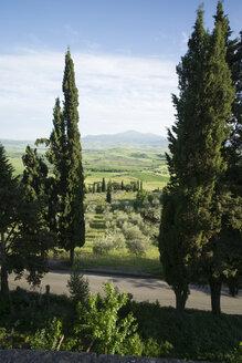 Italy, Tuscany, Pienza, Val d'Orcia - MY000360