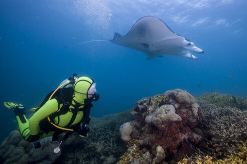 Oceania, Micronesia, Yap, Diver with reef manta ray, Manta alfredi - FGF000061