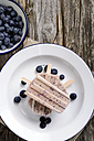 Plate of home-made blueberry ice lollies and blueberries on cloth and wood - ODF000744