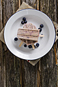 Plate of three home-made blueberry ice lollies and blueberries, elevated view - ODF000762
