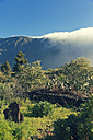 Spain, Canary Islands, La Palma, landscape in Caldera de Taburiente National Park - MEM000245