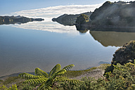 New Zealand, Golden Bay, Whanganui Inlet, islands and mountains reflecting in the water near Westhaven - SHF001491