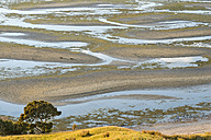 New Zealand, Golden Bay, Puponga, patterns in the sand at low tide - SHF001434