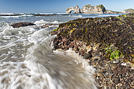 New Zealand, Golden Bay, Wharariki Beach, waves gushing over rocks with seaweed at the beach and rock arch in the background - SHF001446