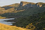New Zealand, Tasman, Golden Bay, Puponga, cliffs and native bush in the Puponga hills near Cape Farewell - SHF001485