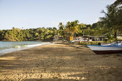Caribbean, Trinidad and Tobago, Tobago, Castara beach - SKF001545