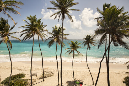 Caribbean, Barbados, Bottom Bay beach - SKF001565