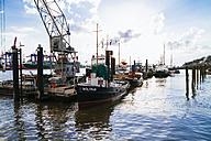 Germany, Hamburg, Altona, Museum harbour Oevelgoenne against the sun - KRP000544