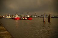 Germany, Hamburg, Port of Hamburg, Elbe river, Towboats - KRP000552