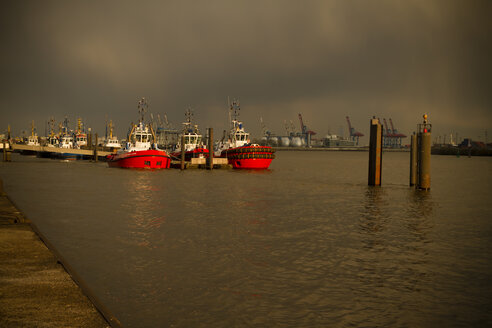Germany, Hamburg, Port of Hamburg, Elbe river, Towboats - KRP000552