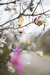 Germany, Lower Saxony, East Friesland, Langeoog, pacifiers hanging on tree - JATF000749