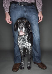 Senior man with his German Shorthaired Pointer between his legs, partial view - JATF000740