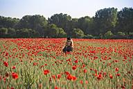 Woman wearing black cap standing in poppy field - YFF000189