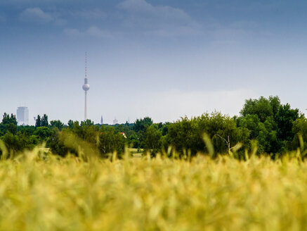 Germany, Berlin, Berlin-Blankenfelde, Luebars, Field, former death strip, Berlin TV Tower in the background - BIG000008