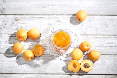 Apricot jam and apricots, Prunus Armeniaca - MAEF008580