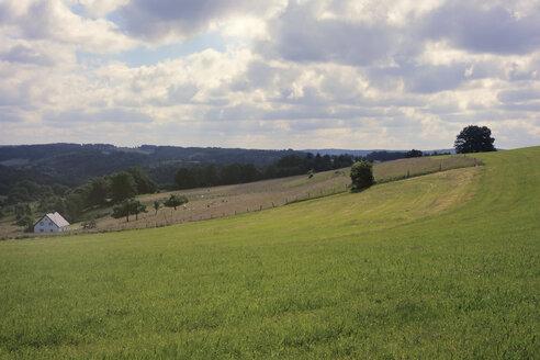 Germany, North Rhine-Westphalia, Rhein-Sieg-Kreis, Bergisches Land, Fields and hills - ONF000601