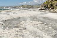 New Zealand, South Island, Tasman, Kahurangi Point, windblown beach - SHF001523