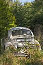 New Zealand, South Island, Nelson, Volkswagen beetle oldtimer overgrown with vegetation in a backyard - SHF001576