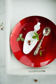 Wild strawberries, Fragaria vesca, shovel, spoon on red plate and tray - MYF000468