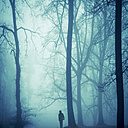 Silhouette of a man in foggy wood at back light - DWI000124