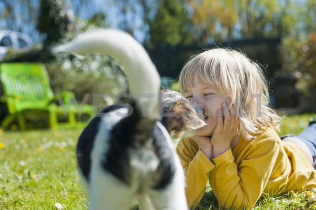 Boy playing with Jack Russel Terrier puppy in garden - MJF001306 - Jana Mänz/Westend61