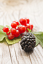 Red currants on leaves and a blackberry  on wooden table - SARF000721