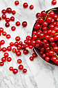 Metal bowl of red currants, Ribes rubrum, on white marble, partial view - LVF001652