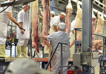 Germany, Saxony-Anhalt, Processing of pork in a slaughterhouse - LY000186