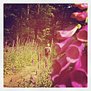 Belgium, Province Luxembourg, The Ardennes, woman hiking, purple foxglove - GWF003028
