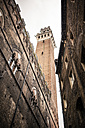 Italy, Tuscany, Siena, tower of Palazzo Pubblico, view from below - SBDF001040