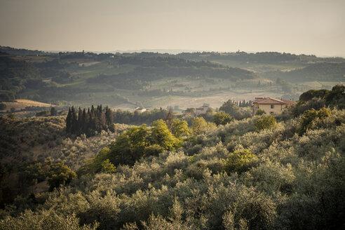 Italy, Tuscany, San Casciano in Val di Pesa, rolling landscape - SBDF001134