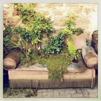 Overgrown couch in a garden, Alsace, France - SEF000762